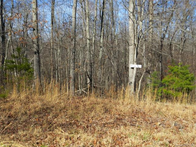 Lot #10 Forest Creek Drive 10, Statesville, NC 28625