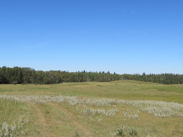 , Rural Red Deer County, AB T0M 0K0