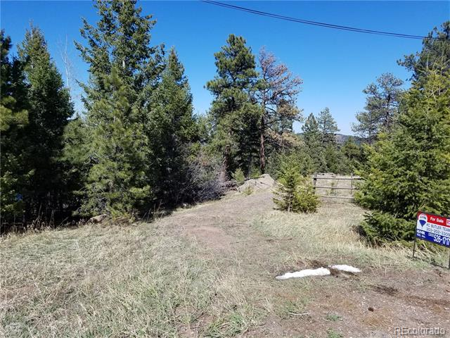 21467 Alta Drive, Morrison, CO 80465