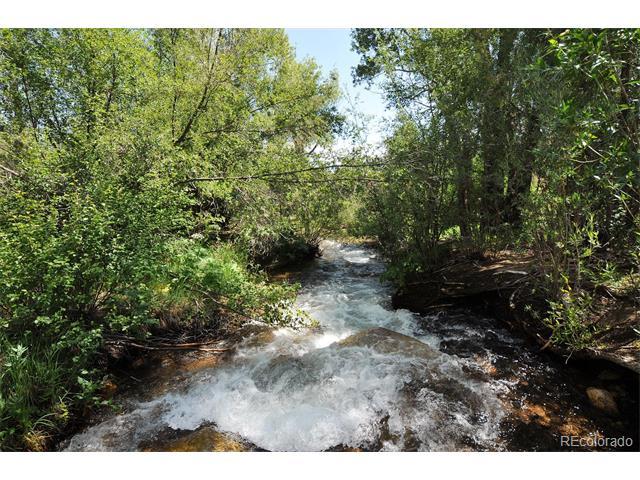 13355 County Road 261C, Nathrop, CO 81236