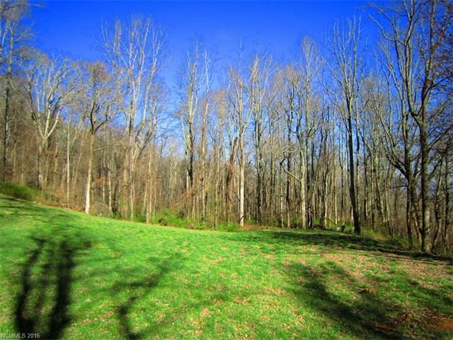 Beautiful View Lot In Pathways Of Solomon! Neighborhood of Upscale Homes, Public Water At Street, Paved Road Frontage, Will Need Septic.