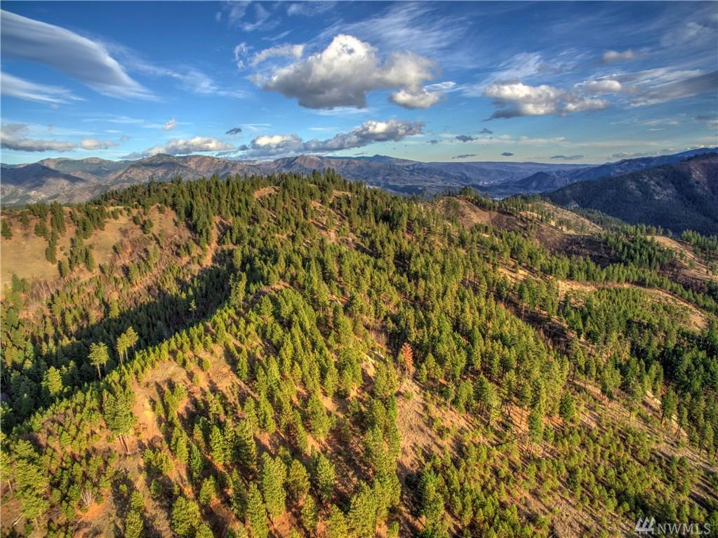 Mountain Home Rd, Leavenworth, WA 98826