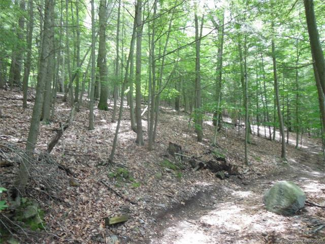 37.06 WOODED ACREAGE WITH WATER VIEWS AND CL&P FRONTAGE ON LAKE ZOAR. ACCESS FROM UPPER FISH ROCK ROAD.  ADJACENT 1.75 ACRE PARCEL AVAILABLE AT ADDITIONAL COST TO IMPROVE THE ACCESS FOR EASIER SUBDIVISION. WATER FRONTAGE AND ROAD FRONTAGE IS APPROXIMATE FROM TAX MAPS.