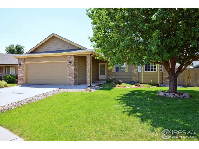 309 Marble Ct, Windsor, CO 80550