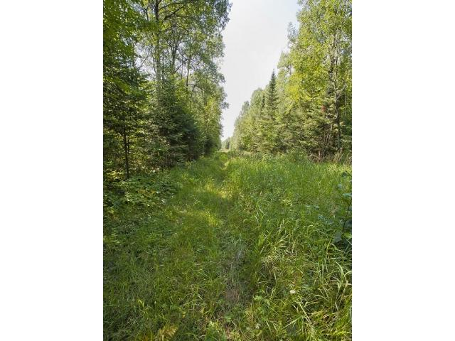 TBD O'Rourke Road, Hibbing, MN 55746
