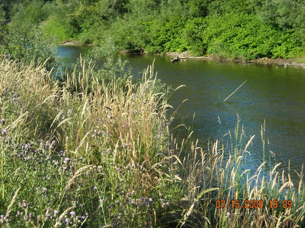 690 Elochoman Valley Rd, Cathlamet, WA 98612