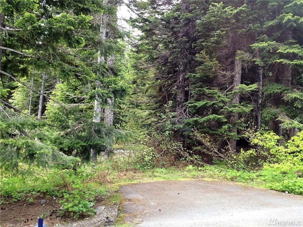 30 Garmisch Place, Snoqualmie Pass, WA 98068