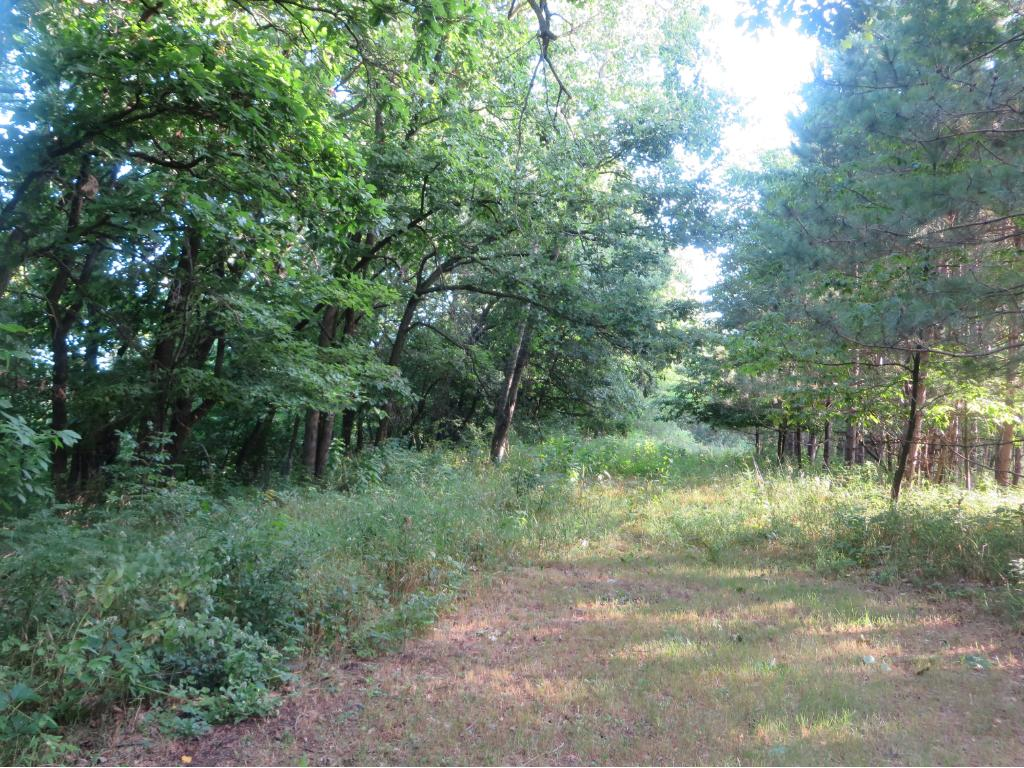 Eagle Point Rd, Menomonie, WI 54751