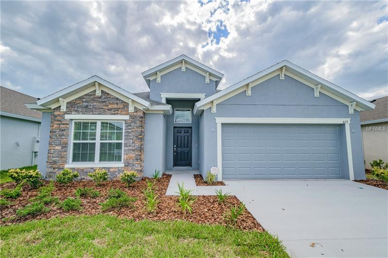 6251 DOE PATH COURT, WESLEY CHAPEL, FL 33545