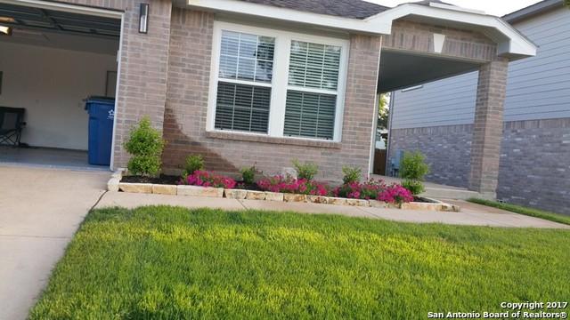 1806 Purple Tansy, San Antonio, TX 78260