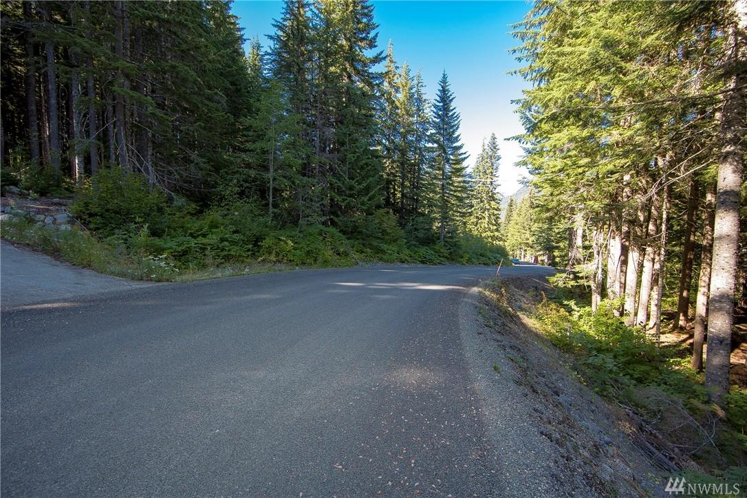46 Snoqualmie Dr, Snoqualmie Pass, WA 98068