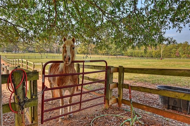 19536 Kistler Farm Road, Davidson, NC 28036