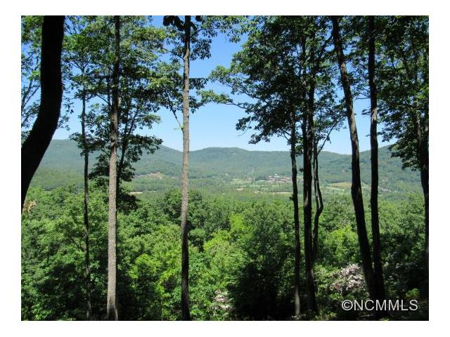 303 Secluded Hills Lane Lot 63, Arden, NC 28704