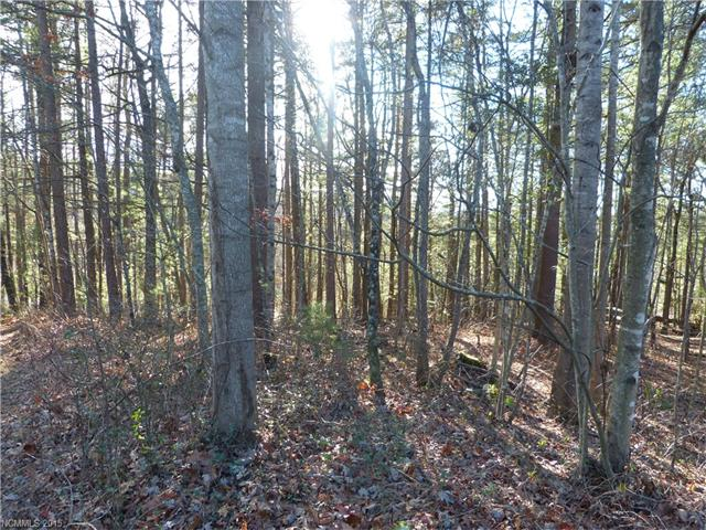 Last lot in a small subdivision. Gentle slope. Good access to Hendersonville, interstates, schools. Inexpensive lot for nice home. Requires septic and well. Short frontage on Laura Trace for drive. Triangular shape. Close to Park Ridge Hospital. Great Buy