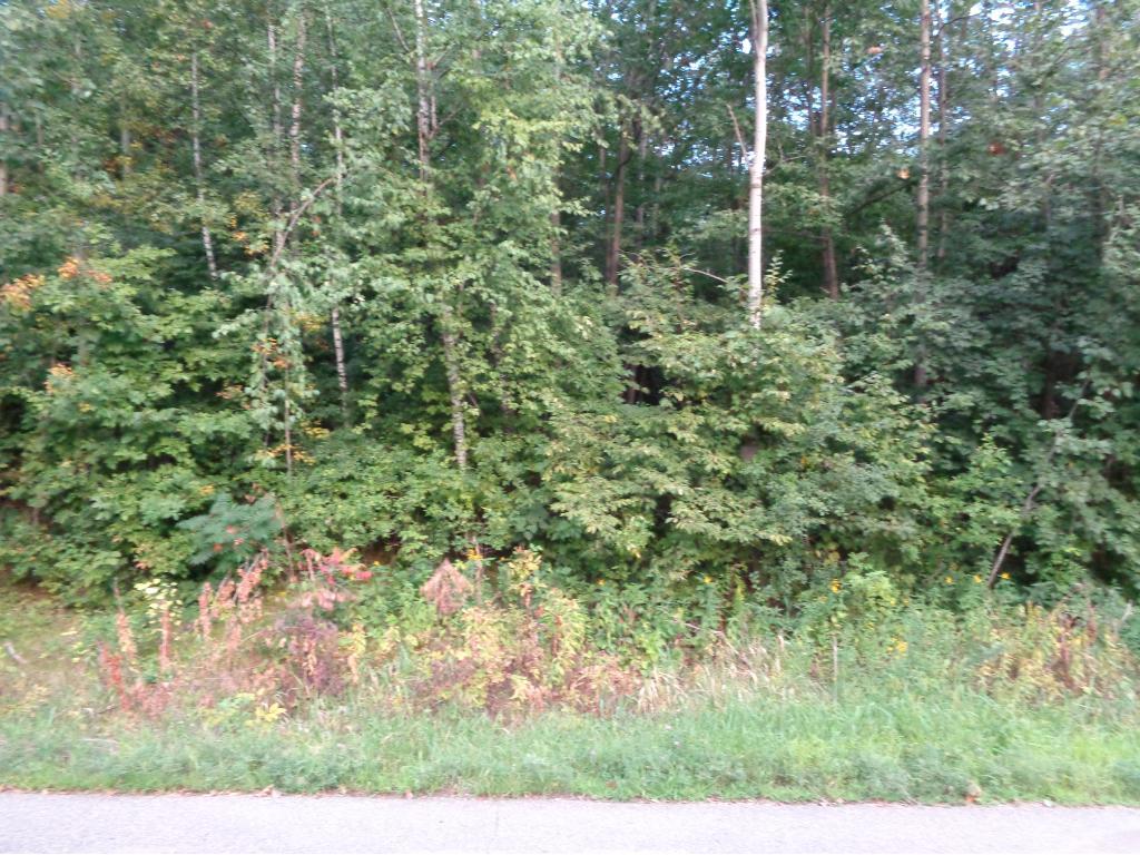 17942 Dove Hill Road, Eden Valley, MN 55329