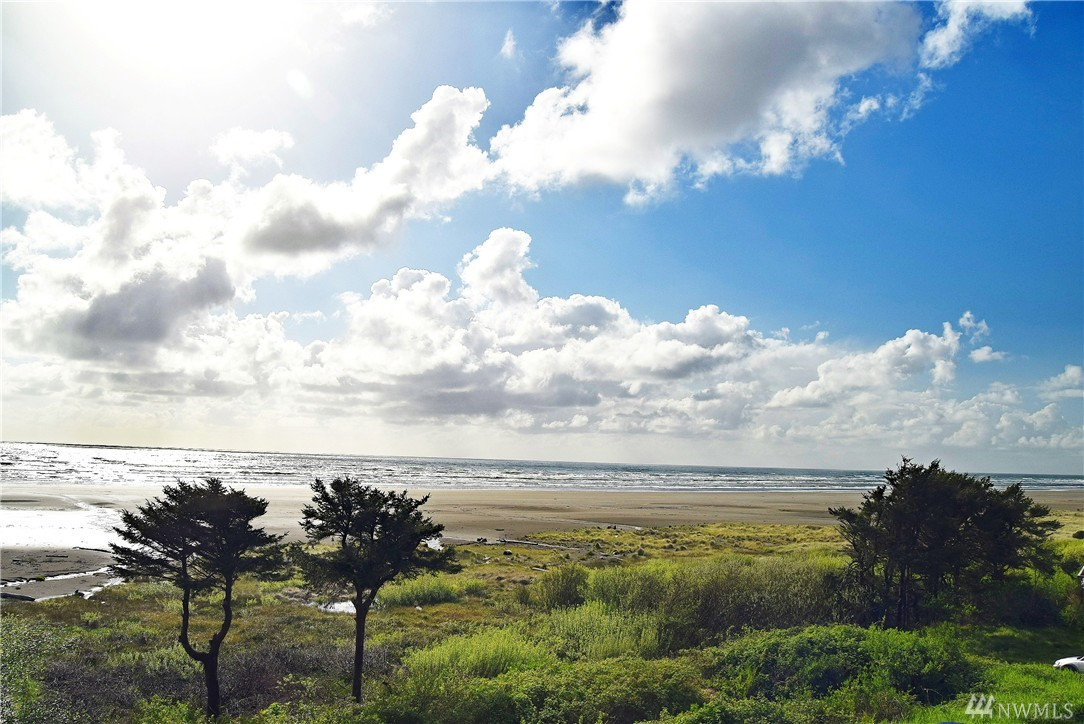 Best ocean view lot left in Moclips and Pacific Beach! Water, Sewer, and power are in the street and ready for hook up. This lot is build-able and you're also allowed to camp as much as you like. Walk to the beach from this location and enjoy the local amenities offered by the Ocean Crest Resort and Spa as well as the new development called Seabrook. Close to downtown Pacific Beach and Ocean Shores for any other supplies you may need. Call now before it sells!