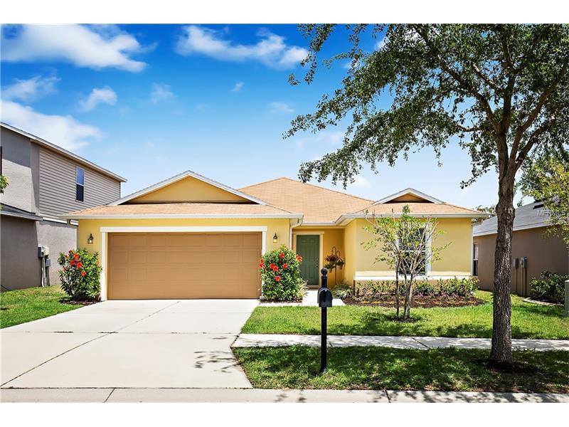 11142 GOLDENROD FERN DRIVE, RIVERVIEW, FL 33569