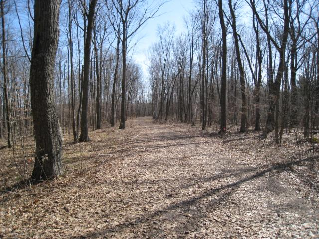 Lot 3 Hungry Lake Road, Rusk Twp, WI 54895