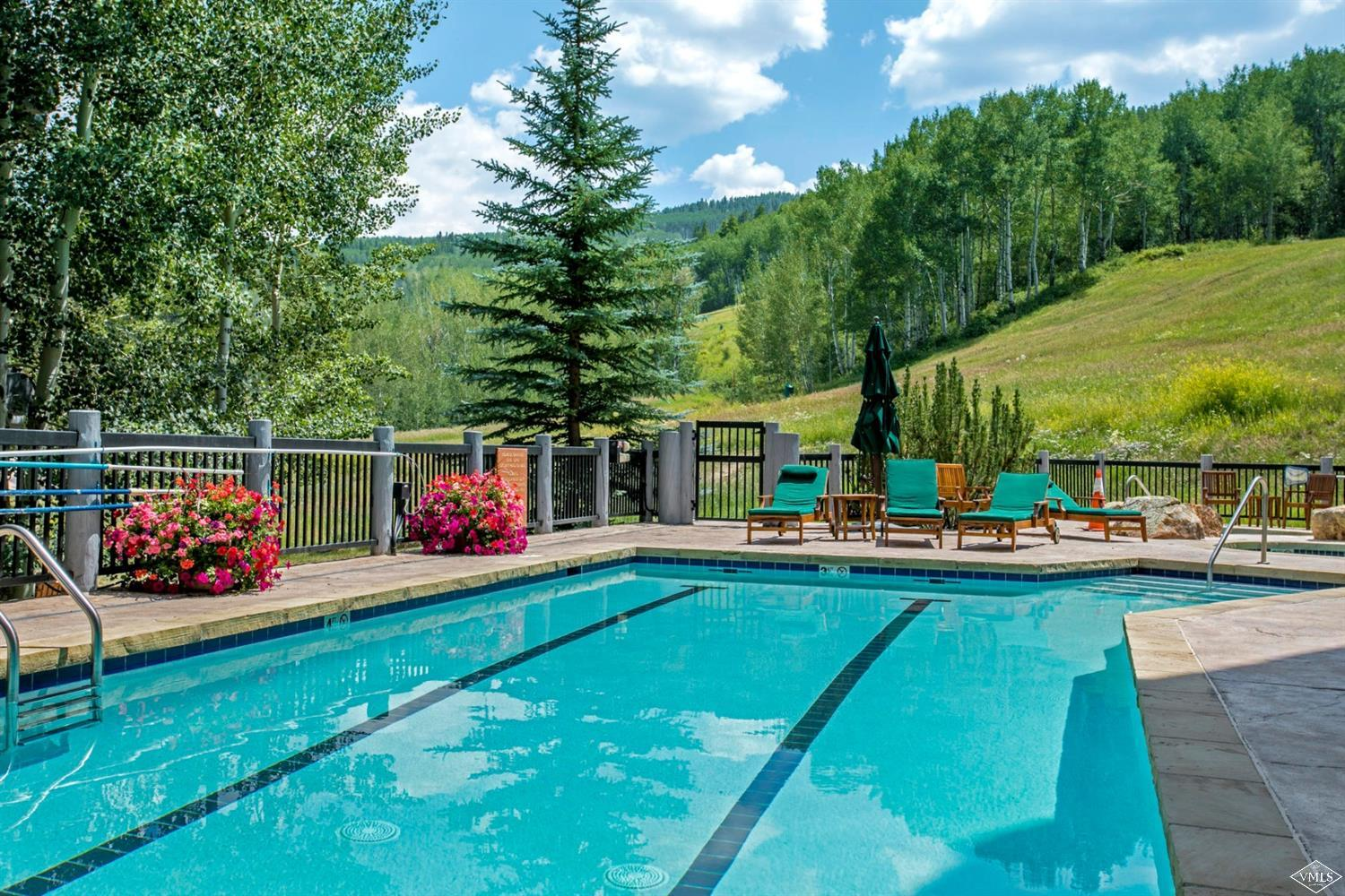 205 Bear Paw, Beaver Creek, CO 81620