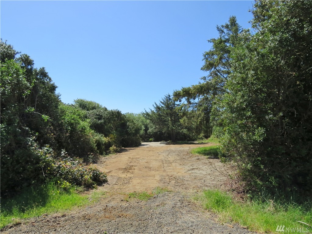 137 Sand Dune Ave SW, Ocean Shores, WA 98569