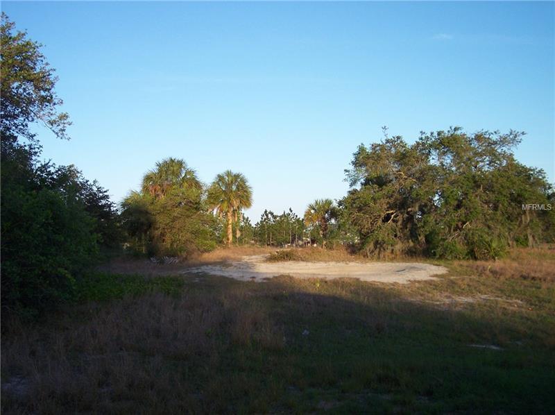 24 TIGER CREEK GROVE, BABSON PARK, FL 33827