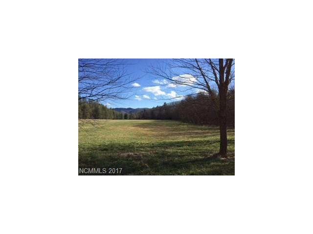 Beautiful 10 level acres in prestigious Cane Creek Valley.  Located in Bridgewater which has a Community Pavilion, Walking Trails and Playground Area.  Looking for that perfect spot for a Horse Ranch - come take a look!  You are sure to fall in love!  Mountain Views, fully fenced acreage and bordering the bold Gap Creek!  Minutes to all Amenities and the heart of Downtown Asheville.