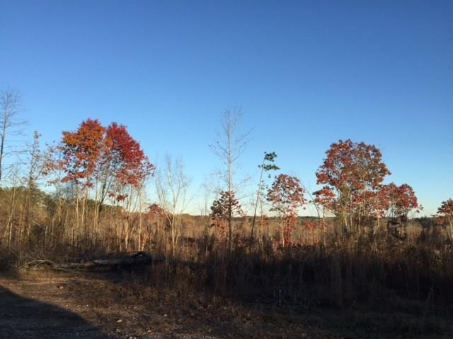 Highway 120, Buchanan, GA 30113