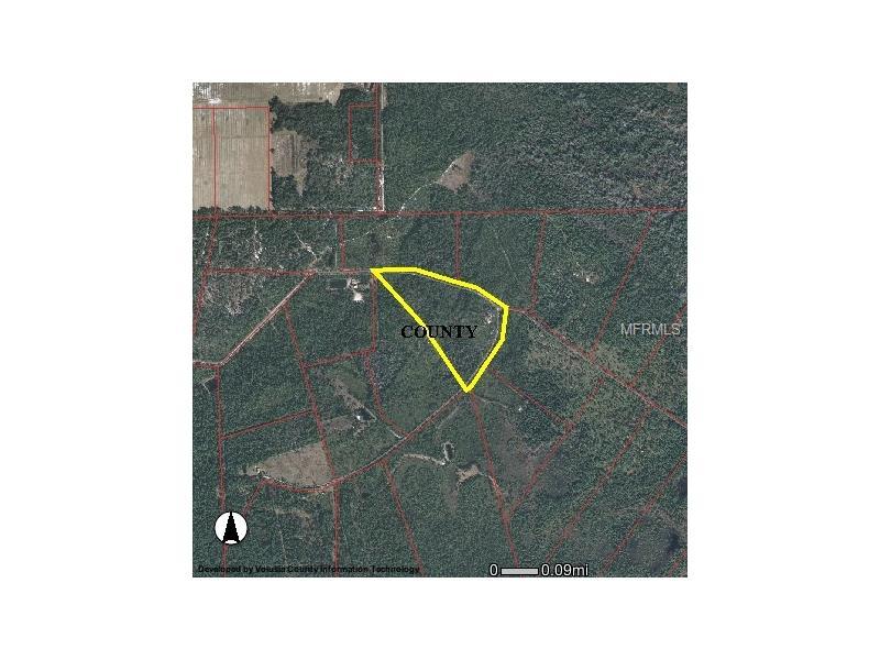 451 VOLUSIAN FOREST TRAIL, PIERSON, FL 32180