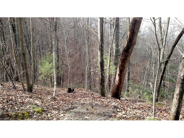 Lot just outside city limits less than 1 mile from downtown, city water tap available, sloping lot ideal for home with basement or on piers to live among the trees. Lots of indigenous trees and laurel. Adjoins city preserved property with access to land trust nature trail.