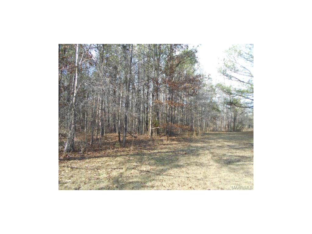 king Road, Tuskegee, AL 36089
