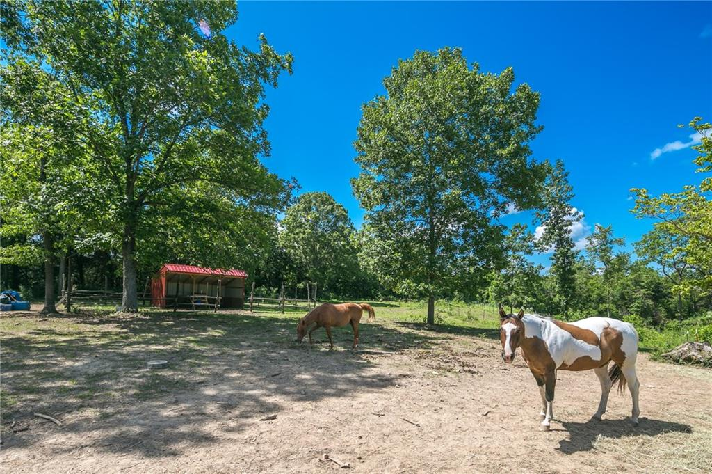 18888 Post Ranch RD, Garfield, AR 72732