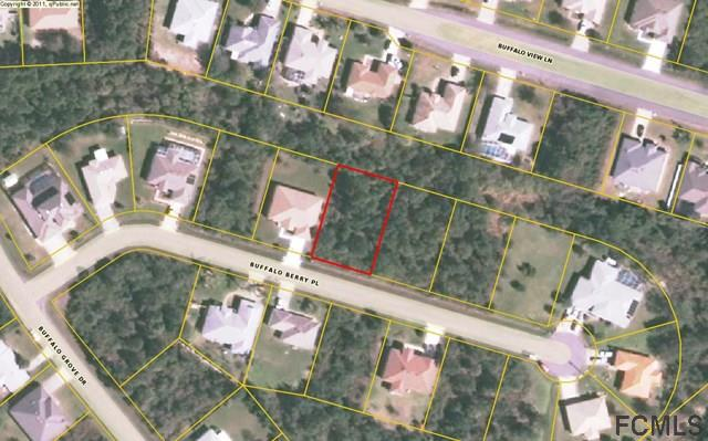 11 Buffalo Berry Place, Palm Coast, FL 32137