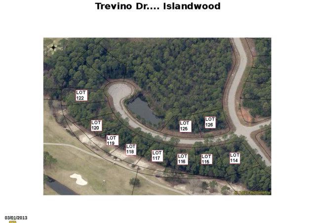 Trevino Dr, Gulf Shores, AL 36542