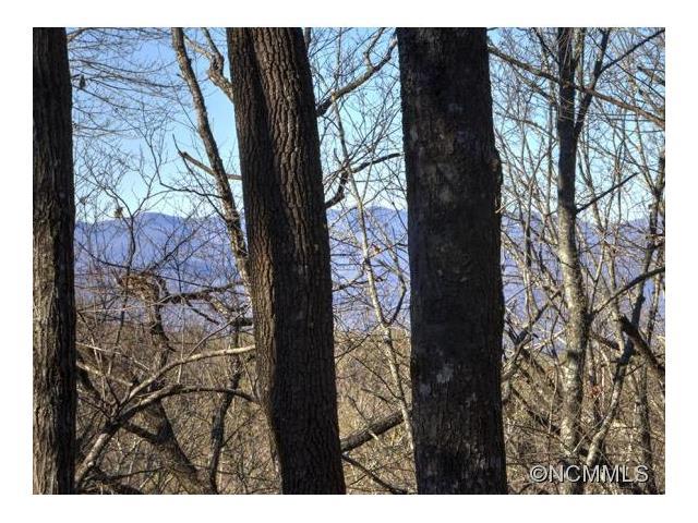 600 Lost Mine Trail, Brevard, NC 28712