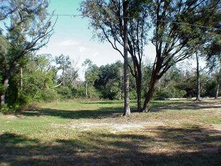 N County Road 49, Magnolia Springs, AL 36555