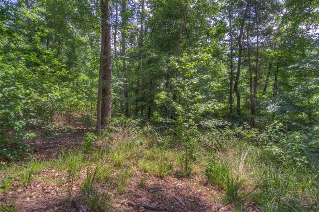 0000 Anderson County Rd., Elkhart, TX 75839