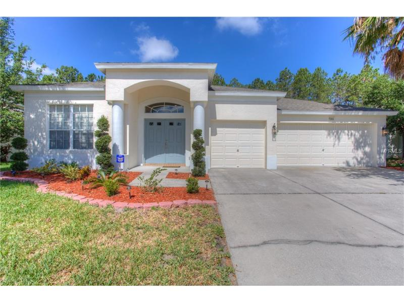 7353 SHORE ACRES STREET, WESLEY CHAPEL, FL 33545