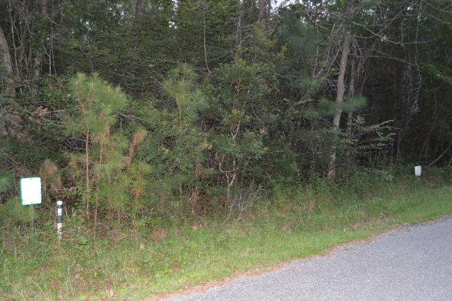 13948 Gladiola Lane, Magnolia Springs, AL 36555