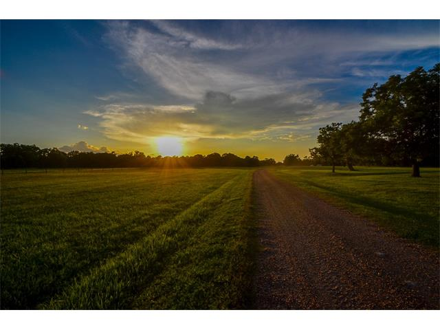19220 FM 442 Rd, Other, TX 77461