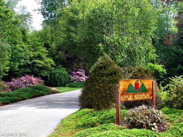TBD Branch Road N, Spruce Pine, NC 28777