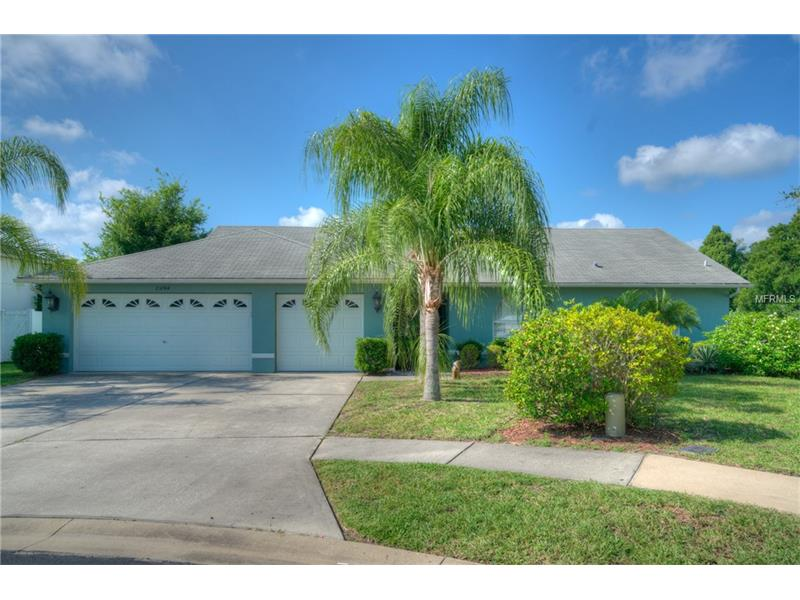 23744 PEACE PIPE COURT, LUTZ, FL 33559