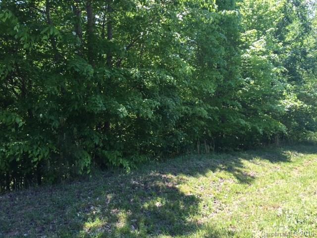 Lot 24 Long Cedar Lane 24, Alexis, NC 28006