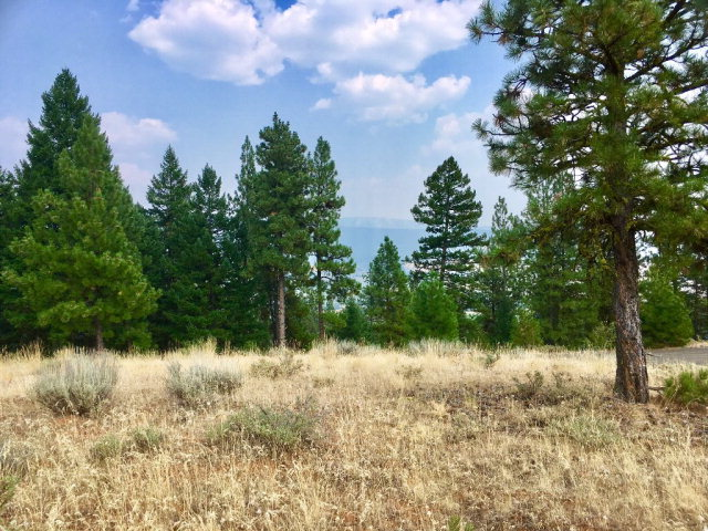 Lot 6 Eagle Feather Road, New Meadows, ID 83654