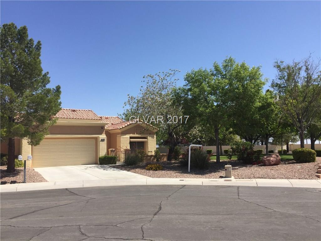 10300 FROSTBURG Lane, Las Vegas, NV 89134