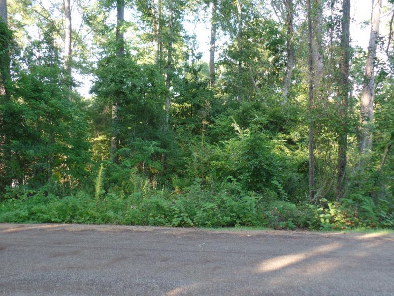 642 Driftwood Loop, Hemphill, TX 75948