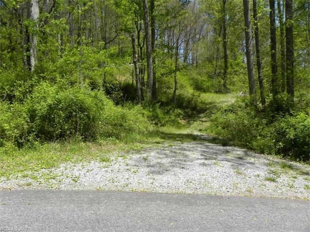 Lots 15&16 Coyote Hollow Road, Clyde, NC 28721