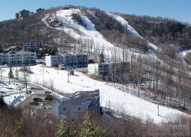 100 301 Sugar Ski Drive 10-301, Sugar Mountain, NC 28604