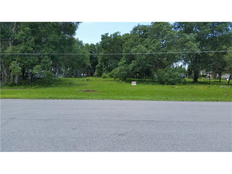 LAKE KING ROAD, ALTOONA, FL 32702