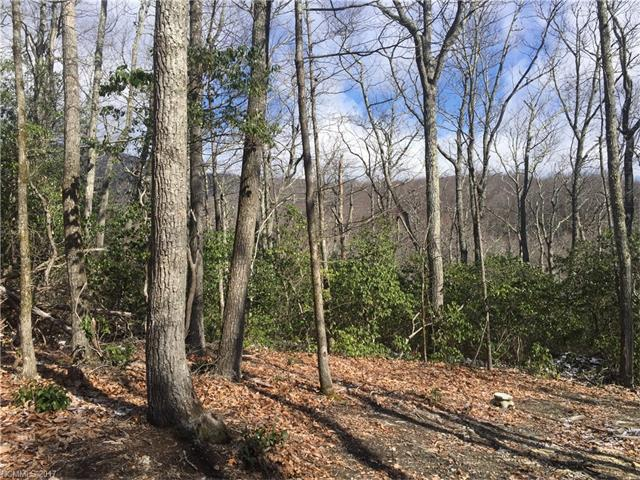 Lace Falls is a well maintained/ well planned community in the Edneyville area. LOT# 67 is a premium lot, with a gently sloping driveway access and fantastic mountain views possible w/ some tree removal/ topping. Private country feel but only 15 minutes to 4 Seasons Blvd.
