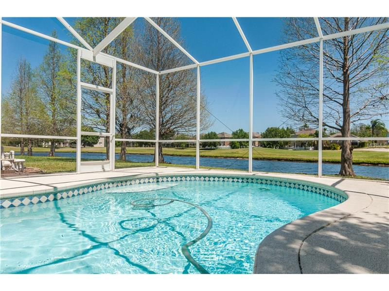 19422 SANDY SPRINGS CIRCLE, LUTZ, FL 33558